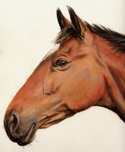 artist-billy-almond_Horse